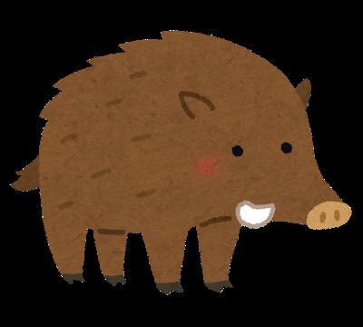 蔵王の豚舎焼け、豚数百頭死ぬ